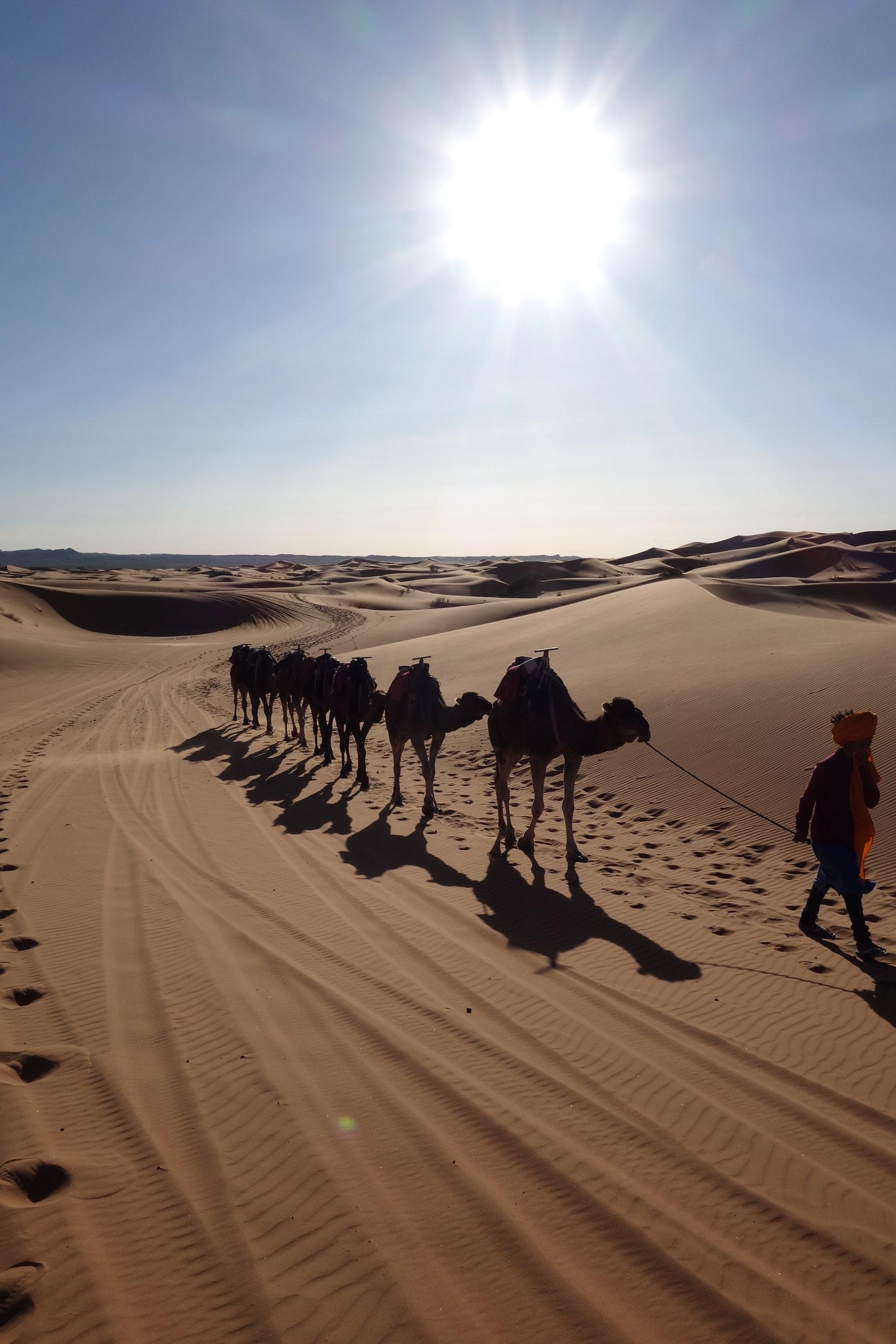 Marokko – Roadtrip 10 Tage